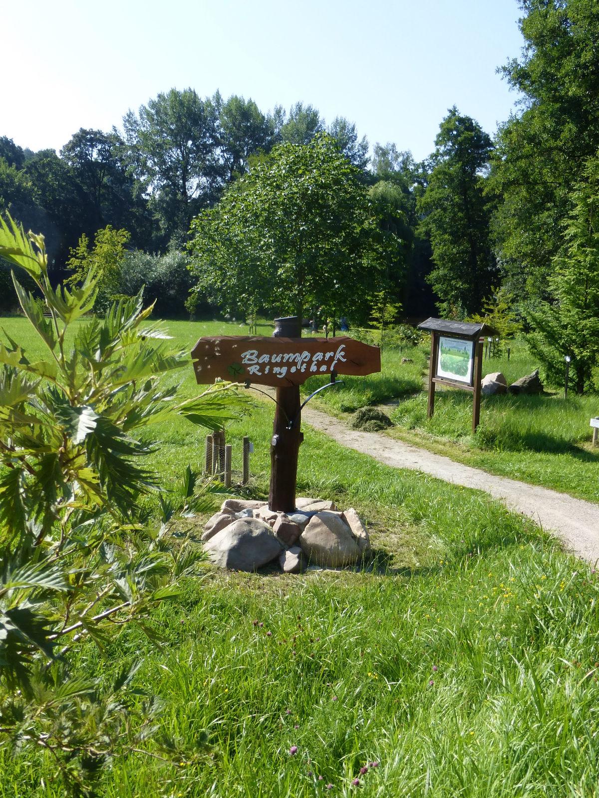 Baumpark Ringethal