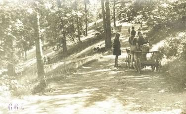Fotografie um 1952, Kinder bei der Parkpflege